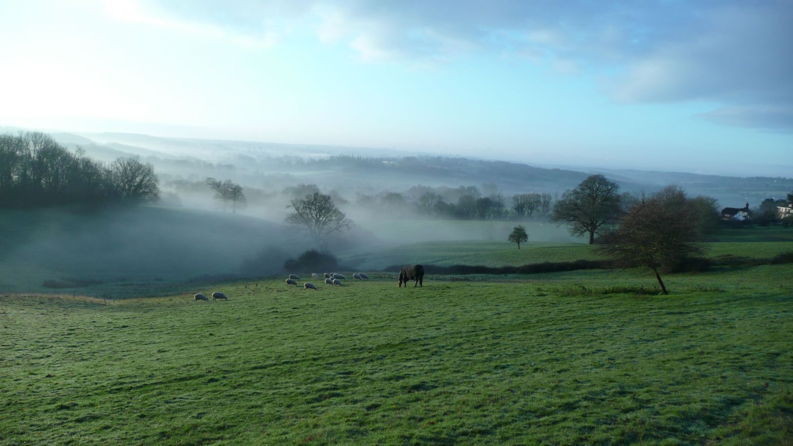 A misty morning in spring - Goudhurst